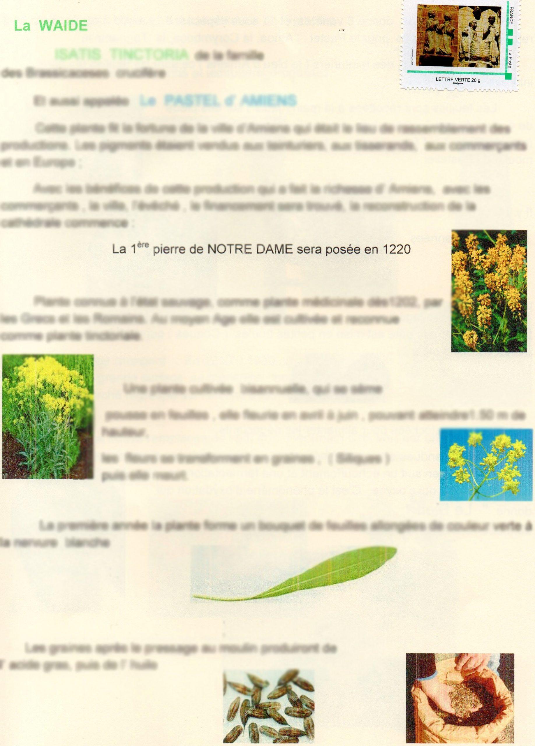 """Plaquette N°444- """"La Waide"""""""